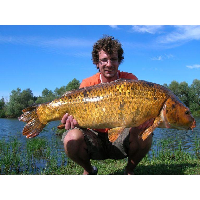 Életem eddigi legnagyobb és legszebb hala...