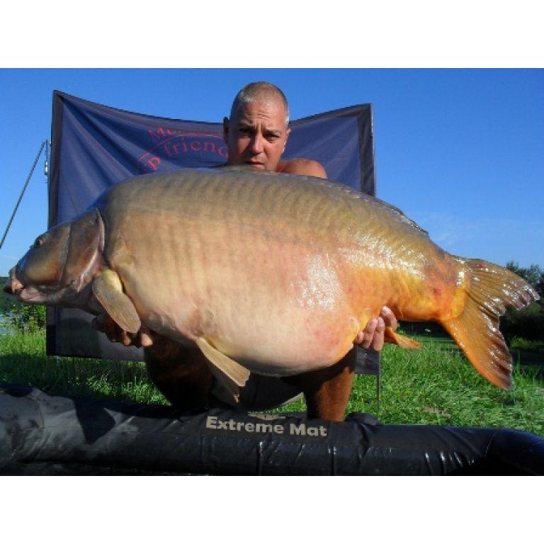 30.70 kg-os óriás