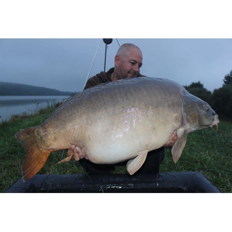 Zeusz 29.85 kg