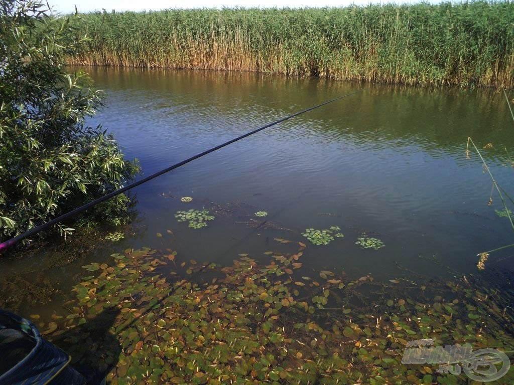 Gyönyörű horgászhely!