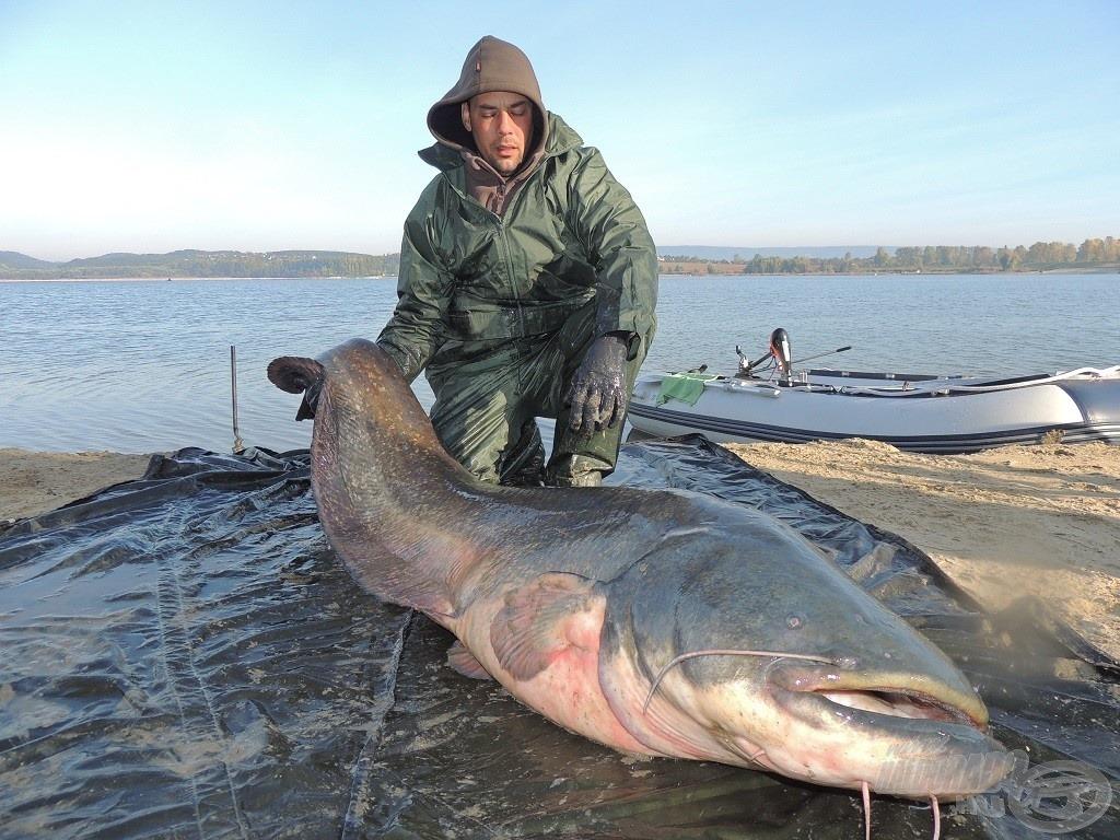 A 2013. év legszebb fogásai 1. rész - nemes halak: Szavazz az év fogására!