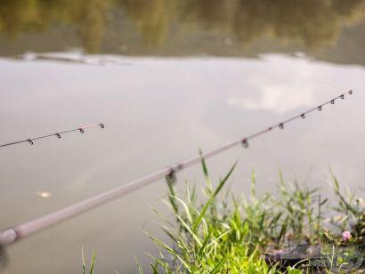 A bizalom halat terem