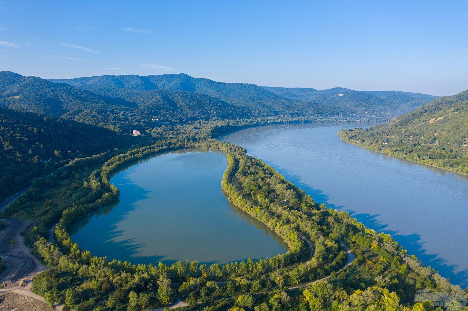 Természetes vizeinkben, így a Dunában is rengeteg busa él