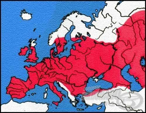 Európa nagy részén megtalálható