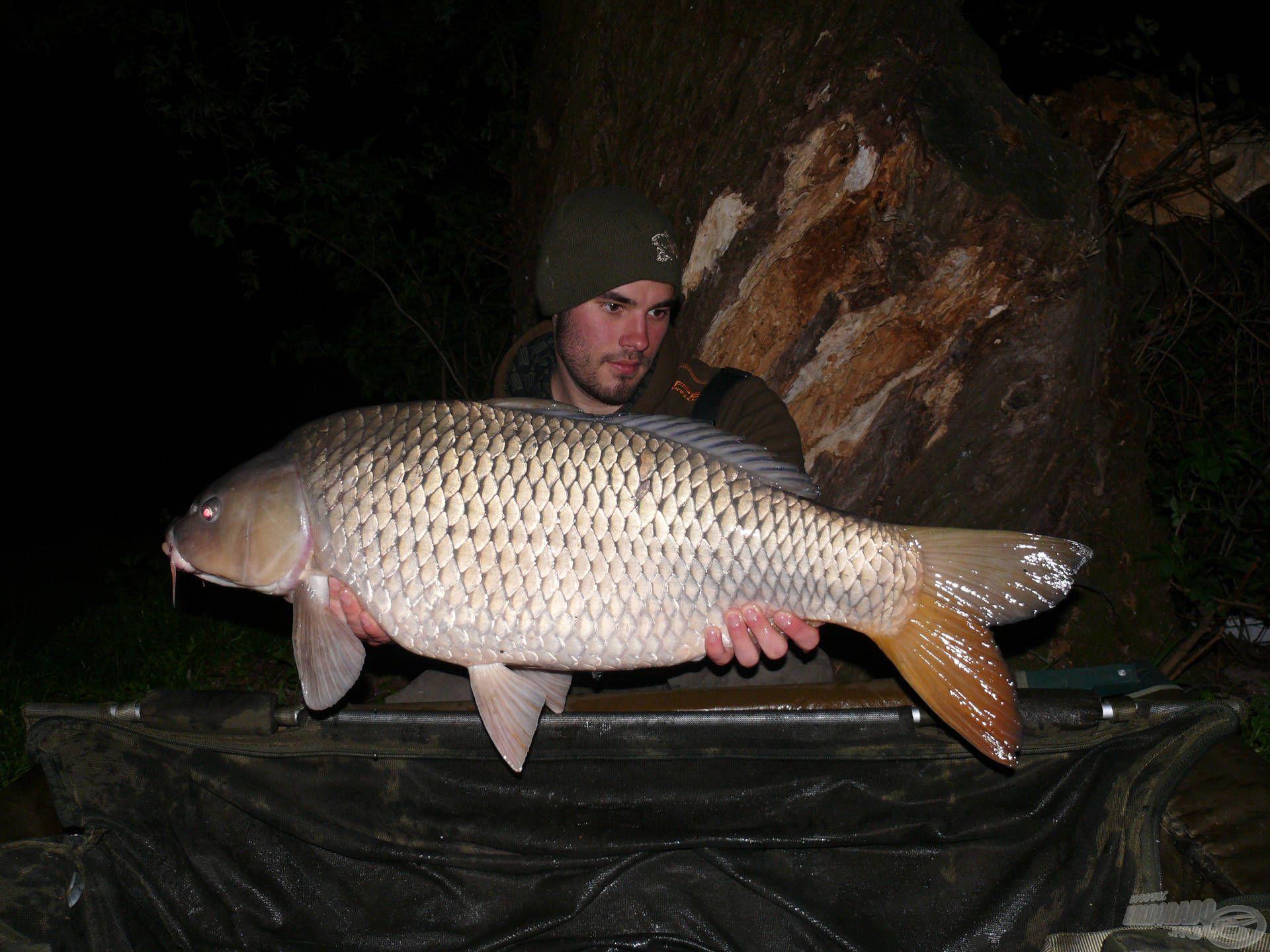Éjszaka a halak ismét táplálkozni kezdtek