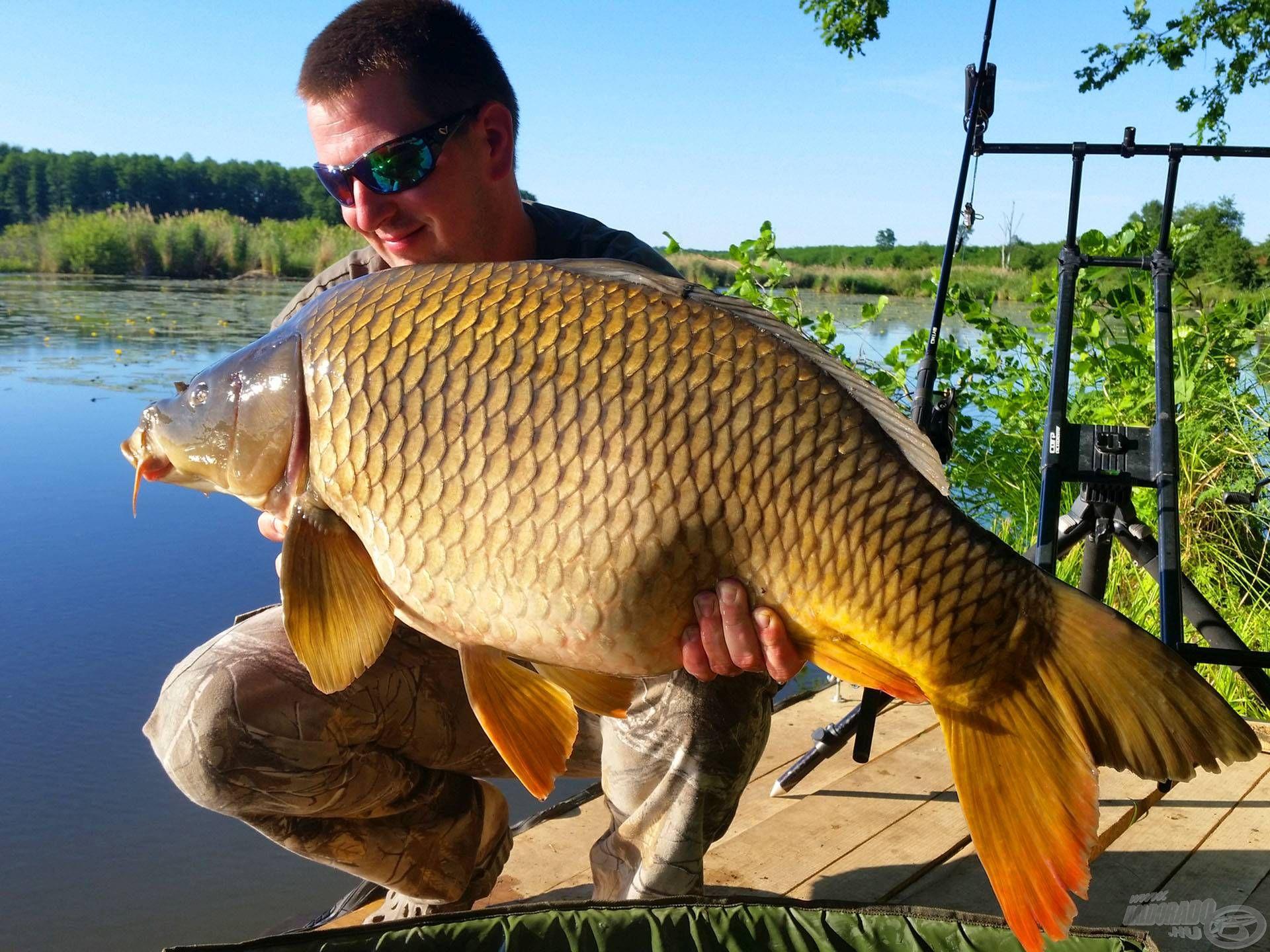 Kapástalan helyzetekben kiharcolni egy különleges fogást: ezért érdemes változtatni horgászat közben!