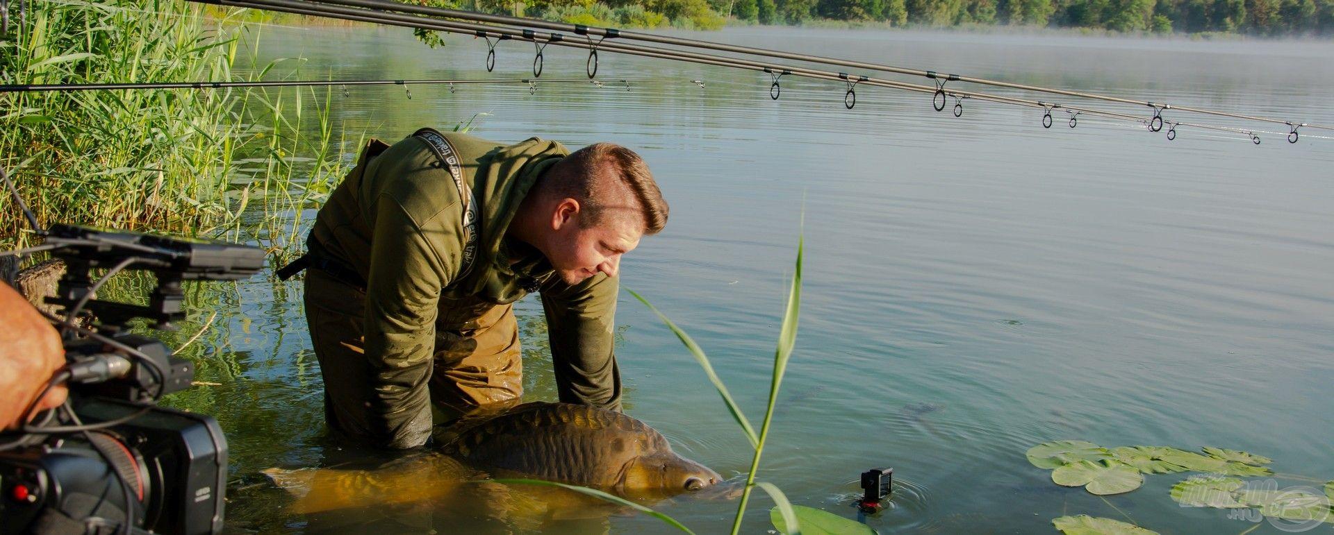 A hal megfogásáról videó is készült, mely a legújabb Nagy pontyok nyomában filmben lesz részletesen bemutatva