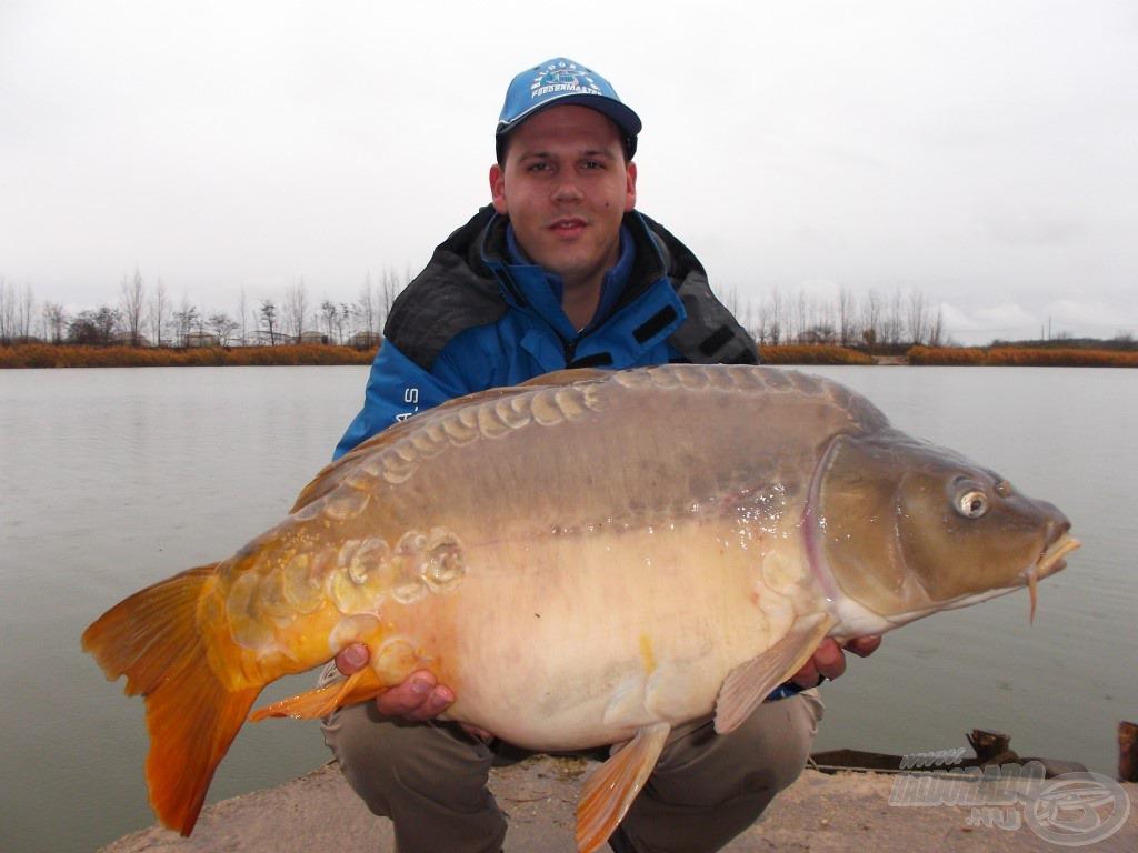 Egy újabb gyönyörű hal, ezúttal egy tükrös, közel 12 kg-ot nyomott