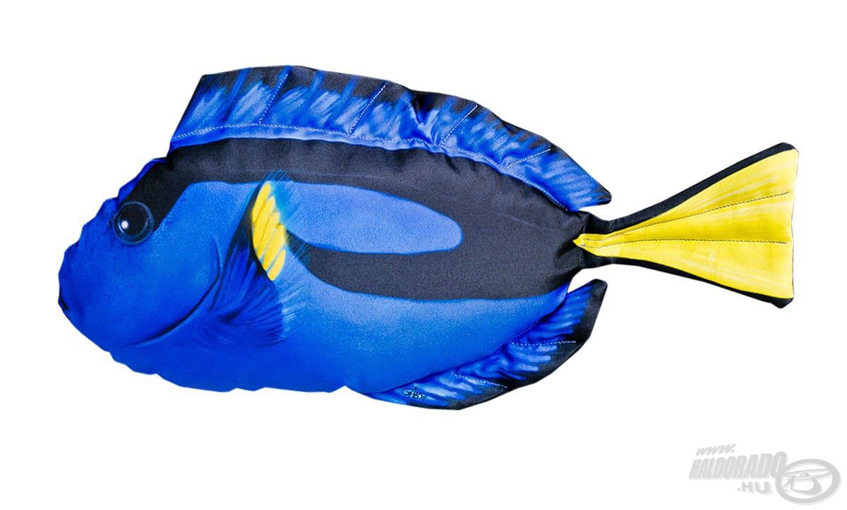 Némó mellett a népszerű film másik szereplőjét, a hóbortos Szenillát is megalkották egy-egy kék halas párna formájában. Ahogy a filmbeli karakter, ez is egy palettás doktorhalat mintáz. Ebből is kettő méret létezik, a nagyobb 46 cm, míg a kisebb 30 cm nagyságú