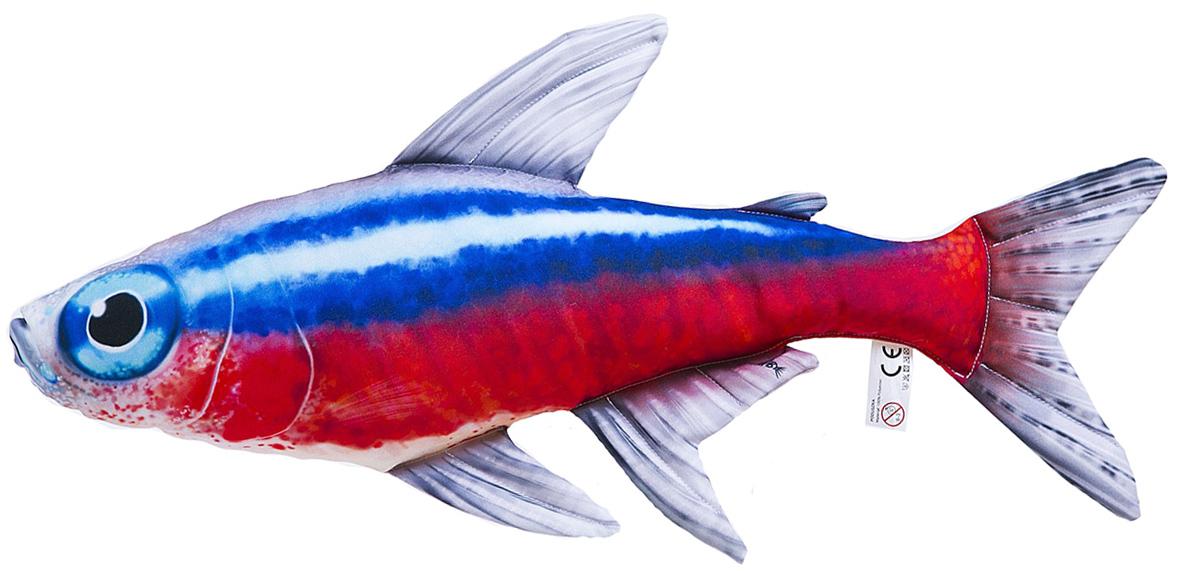 Nem kevésbé gyakori és népszerűa neonhal, mely most már nem csak az akváriumot, hanem a kanapét is feldobhatja gyönyörű színeivel