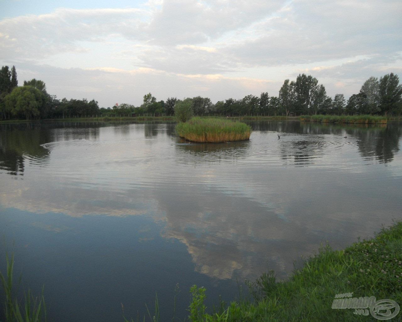 A tó egy részlete, amely már önmagában kíváncsiságot ébreszt…