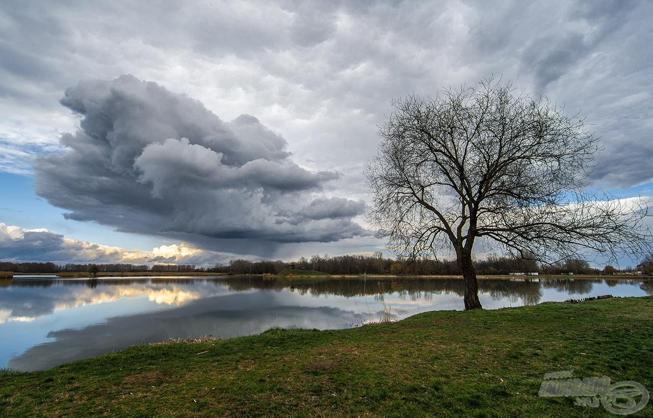 Tavaszillat árasztja el a tópartot