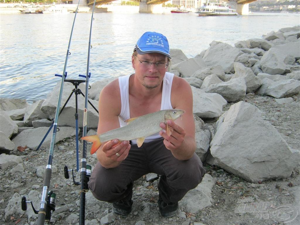 Sajnos a halak innen hamar elhúznak, és visszaesik a fogás. Többnyire örülök annak is, ha akár egyet is fogok…