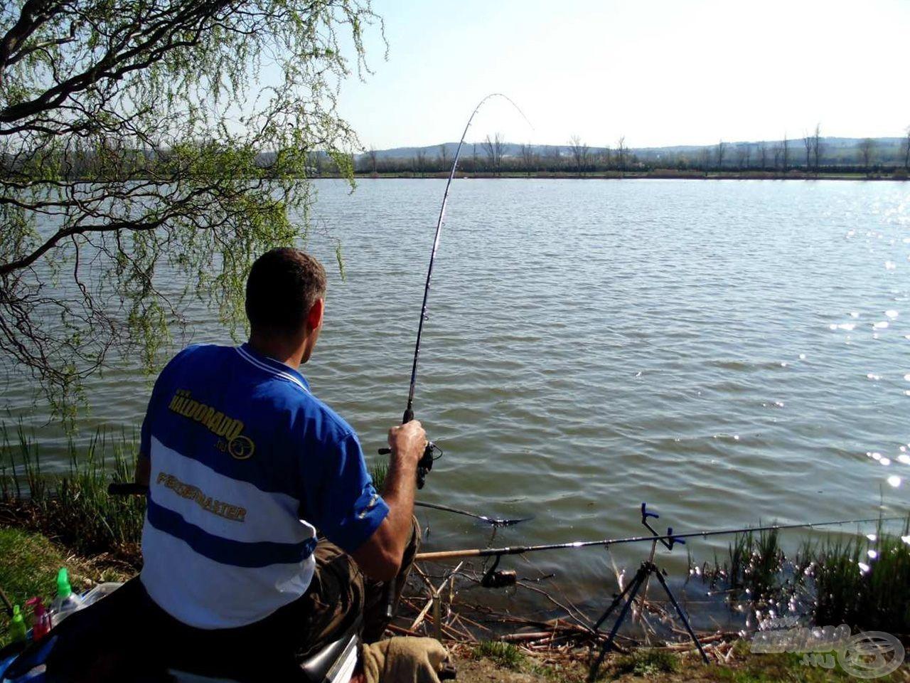 A folyamatos dobálás hatására a halak egyre koncentráltabban vannak jelen az etetésen…