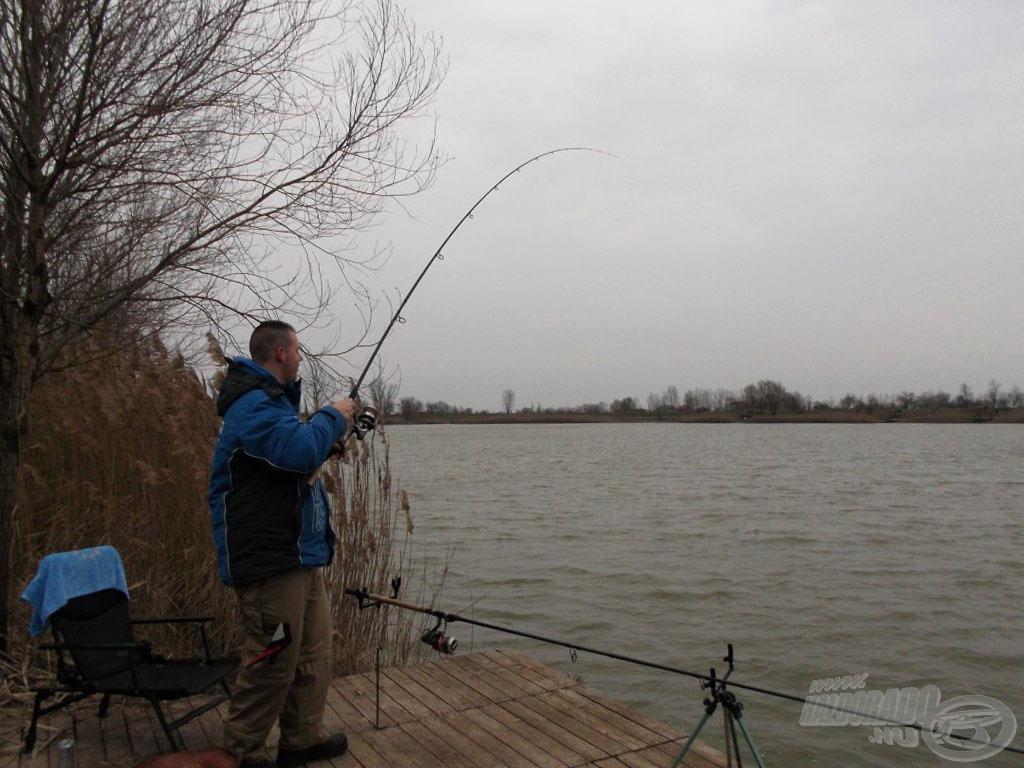 Nem kellett sokat várnom, agresszív kapás után horgon volt az első hal…