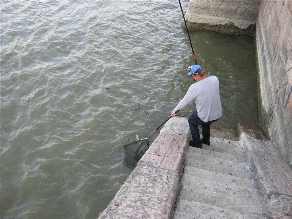 Ezen a képen látszik a legjobban az, hogy miért fontos számomra a lépcsők közelsége. Szépen le lehet sétálni a halhoz és…