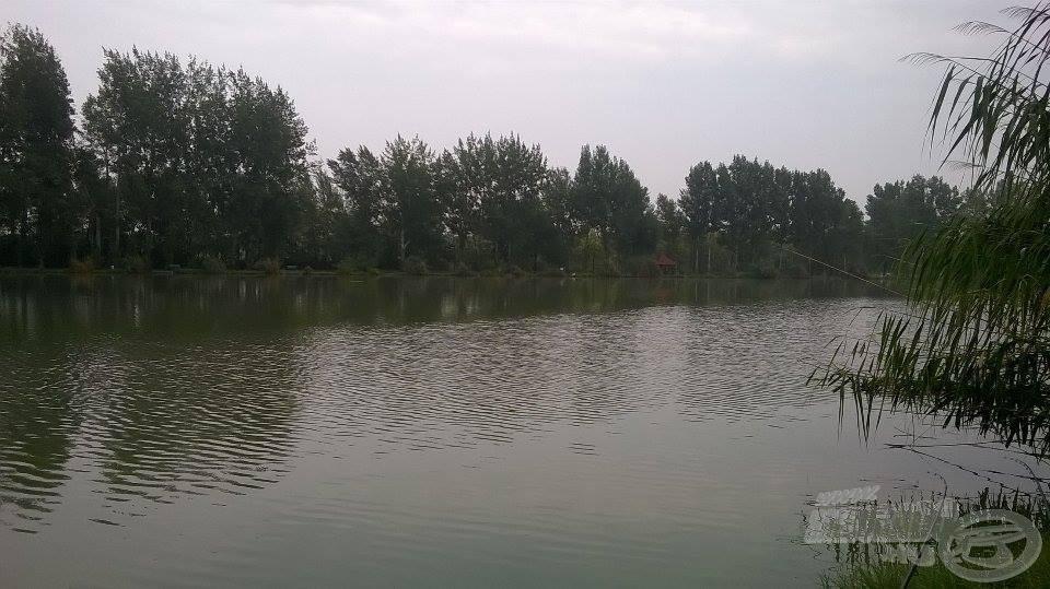 Csodálatos látványt nyújt a tó a 81-es sorszámú helyről