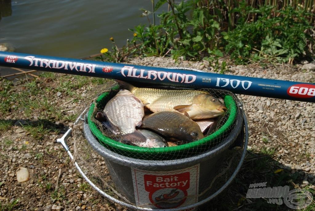 A STR Allround versenyzésre is alkalmas, de a nagyobb halak sem hozzák zavarba
