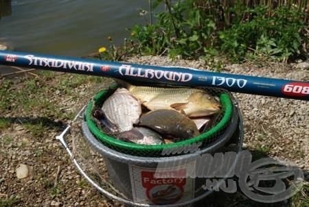 A rakós botos horgászat iskolája 5. rész - A rakós bot ára és kiválasztása
