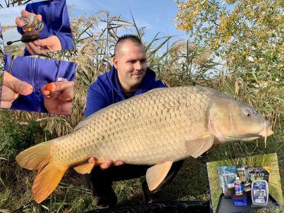 A Spicces Horgásztó őszi pontyai