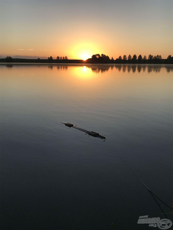 A szivacsokkal ellátott mérlegelőben nyugodtan várhatja a hal a fotózást