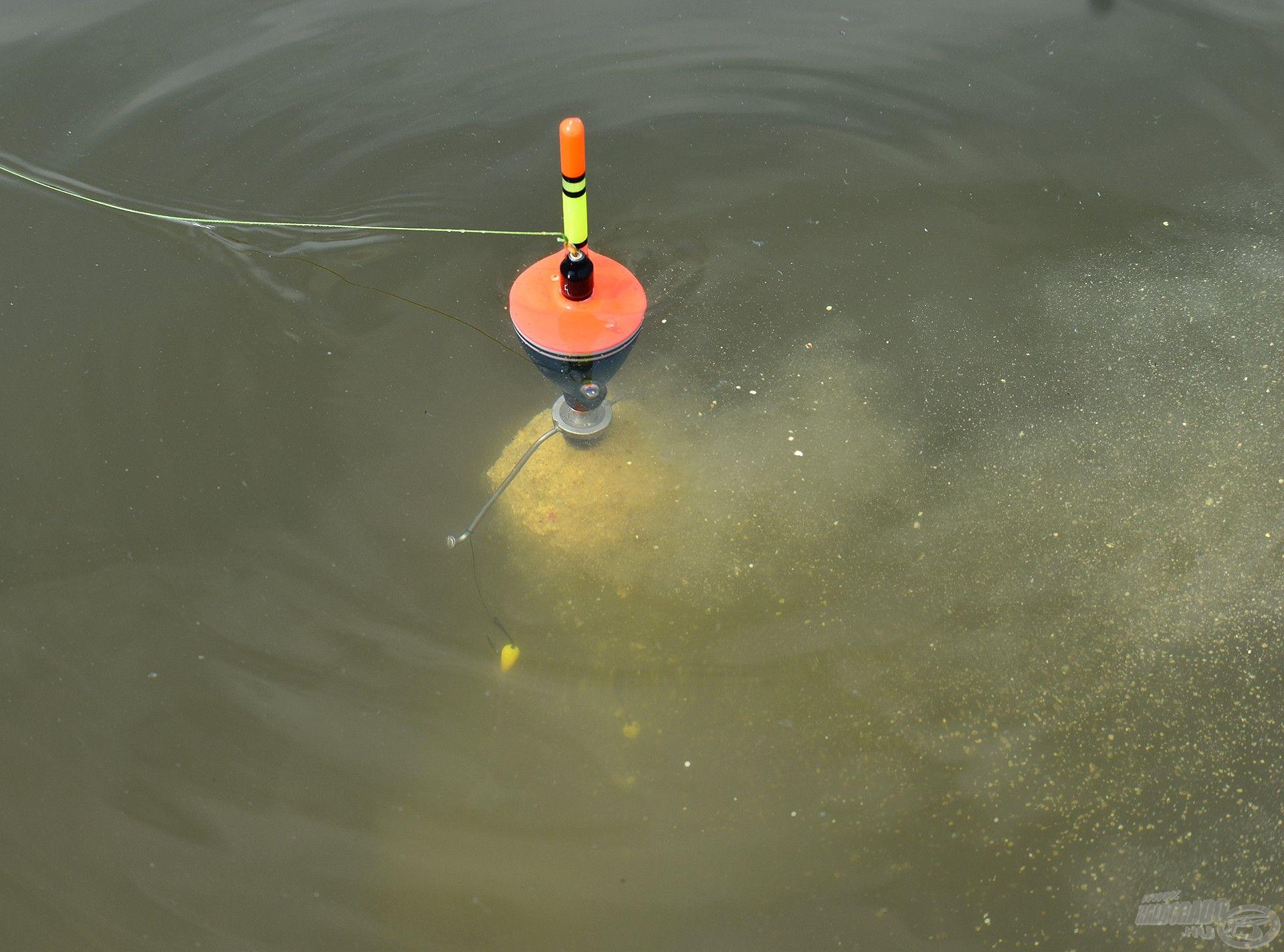Nyugodt vízben a legeredményesebb a Silver Carp úszó használata