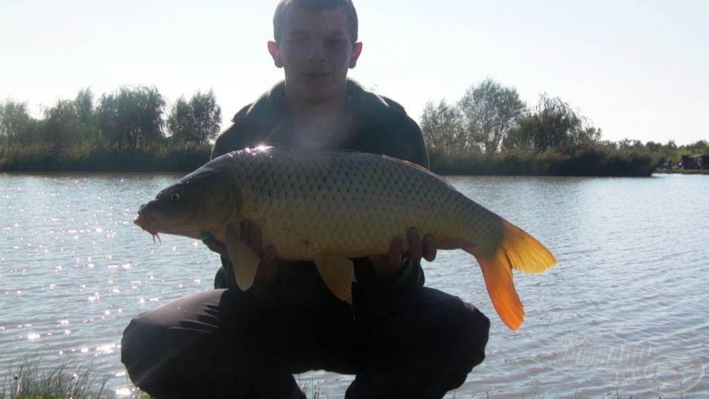 A nap legnagyobb hala: 7,10 kg