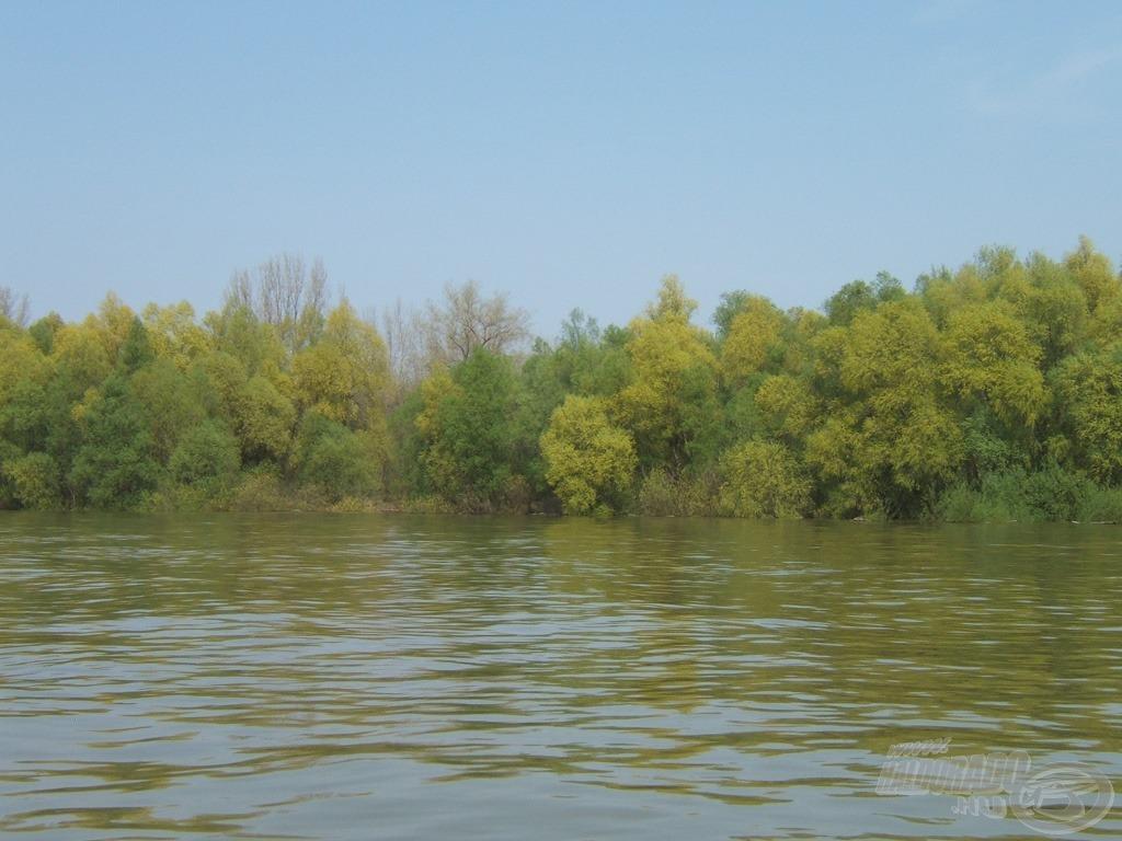 Az üde zöld part jóleső látvány