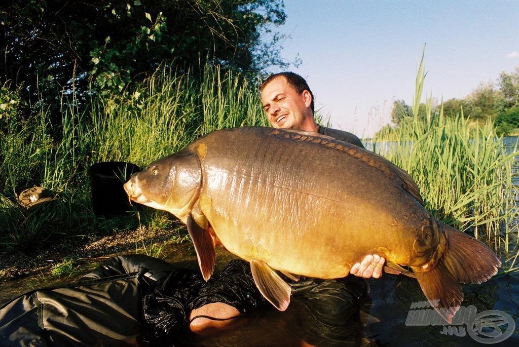 A főszerkesztő gyékényesi hala…, amely természetesen a kifogása után visszakerült eredeti élőhelyére. Ekkor 29,4 kg volt!