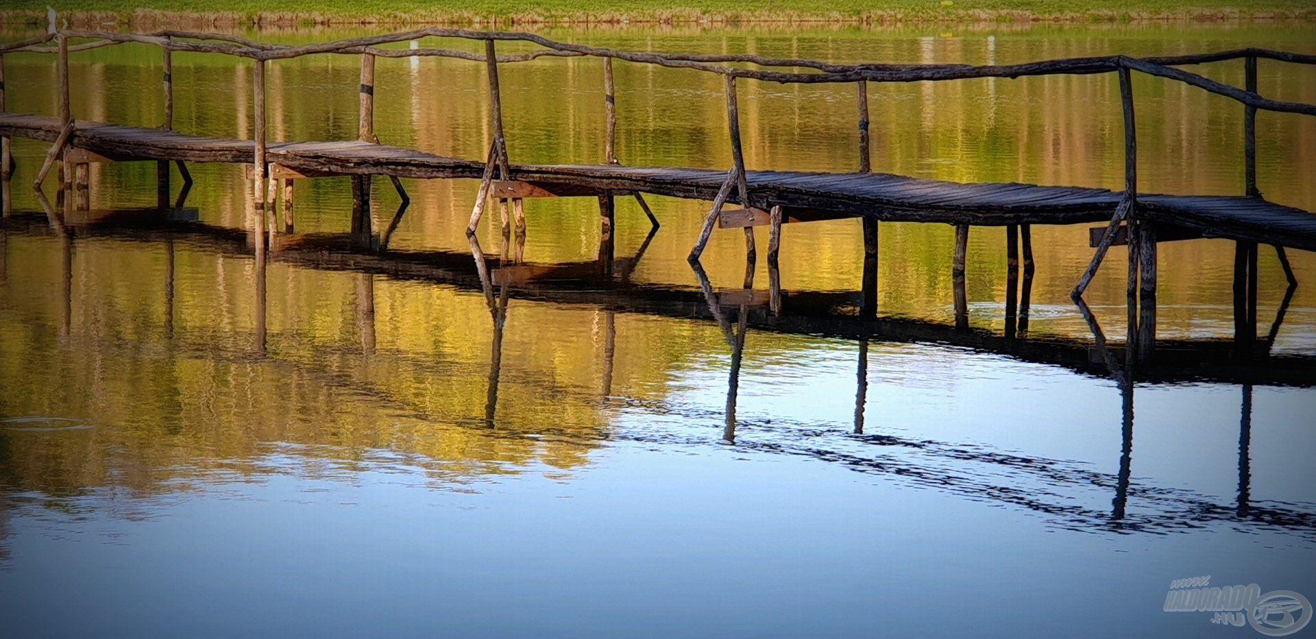 A tavat átszelő fahíd tartólábait a jó erőben lévő, termetesebb halak gyakran igyekeznek célba venni