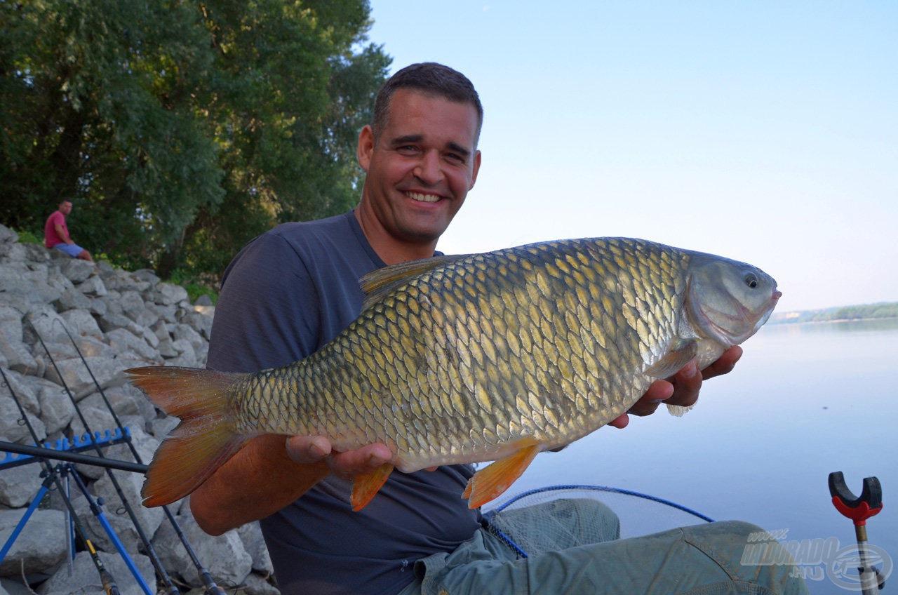 A nagyméretű folyóvízi halak is imádják az édes falatokat