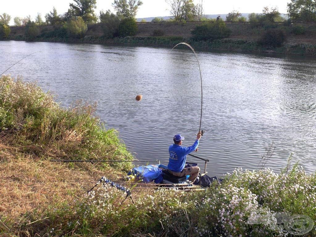A folyóvízi horgászat elengedhetetlen adalékanyaga!