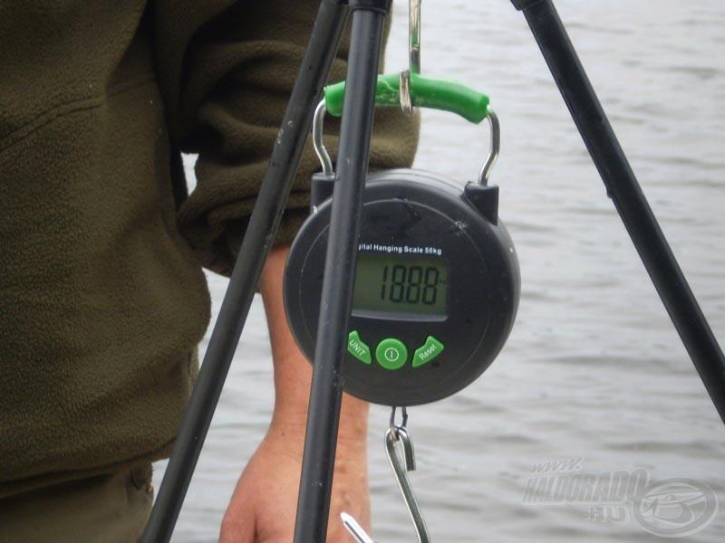 Csaknem 19 kiló hal