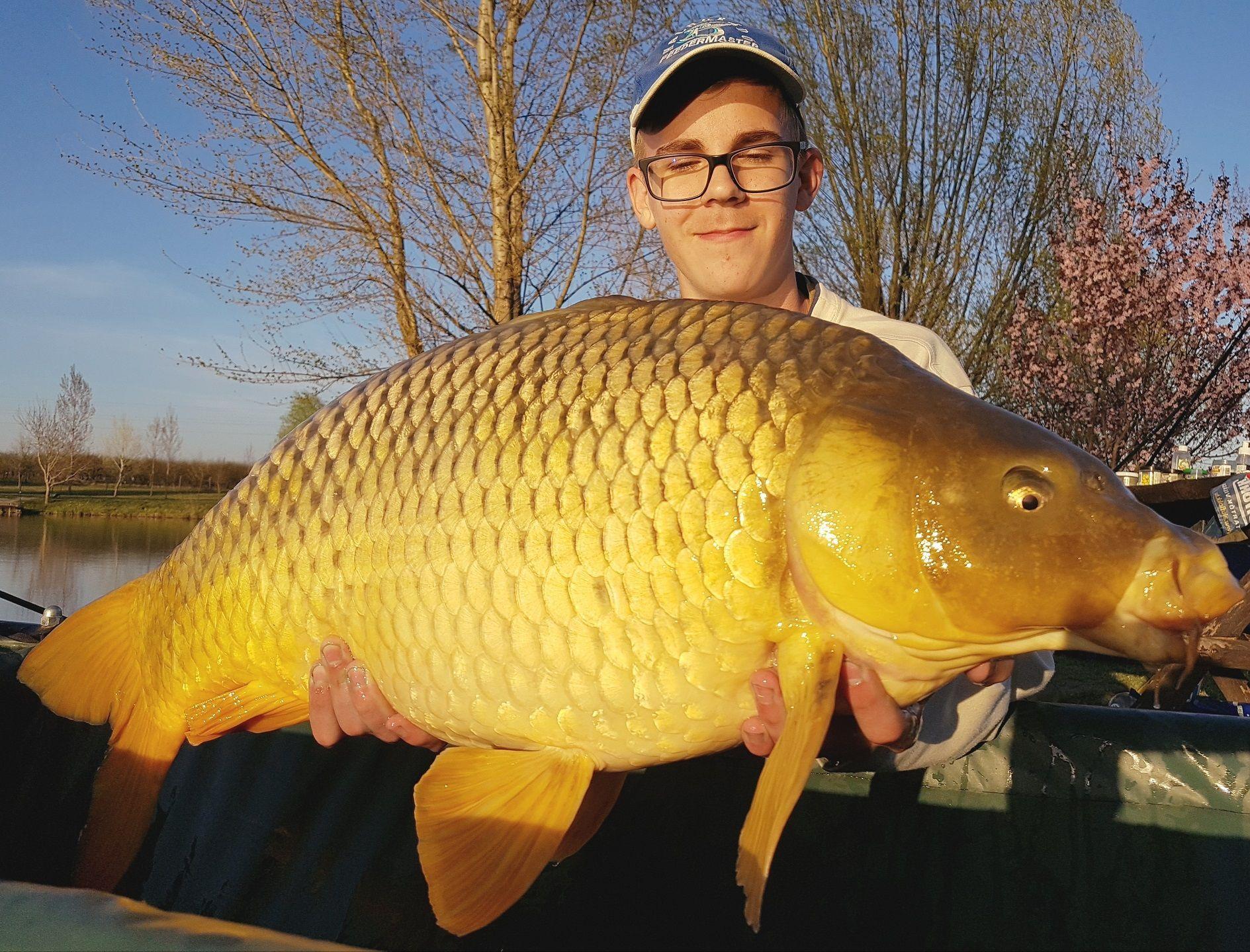 Azt hiszem bármelyik kezdő horgásztársam megirigyelhetné Bálint csodálatos fogását, egy 13,5 kilogrammos gyönyörű tőponty személyében!