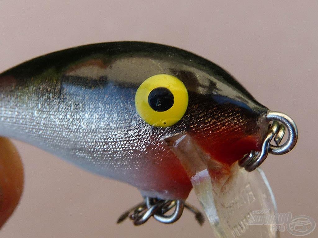 Painted eye - festett műcsali szem