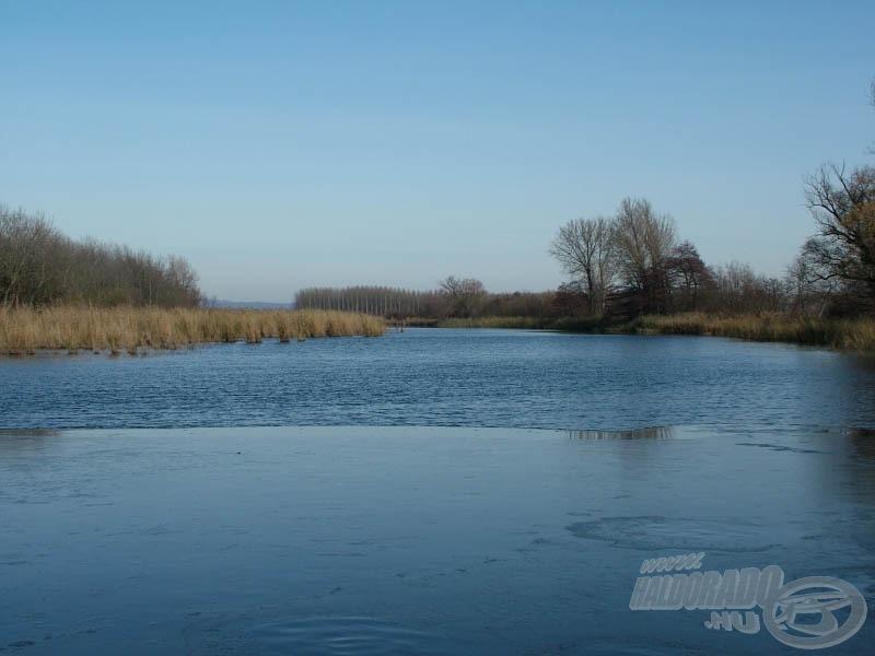 Freeze at the surface - befagy a vízfelület