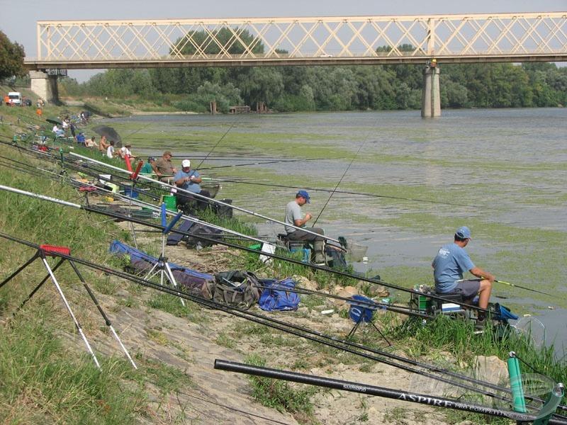 Több mint félszáz mesterhorgász ülte meg a vén gesztenyefák alatti Tisza-partot