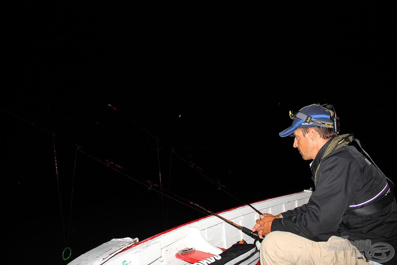 Én sem tétlenkedtem a sötétség beállta után, ezúttal fenekező módszerrel kerestem tovább a halakat