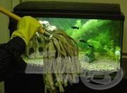 Az akvárium karbantartása
