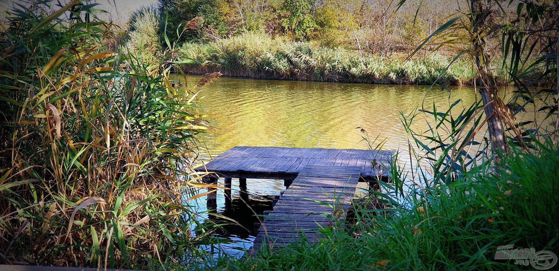 A horgászállásokon található stégek könnyen megközelíthetőek