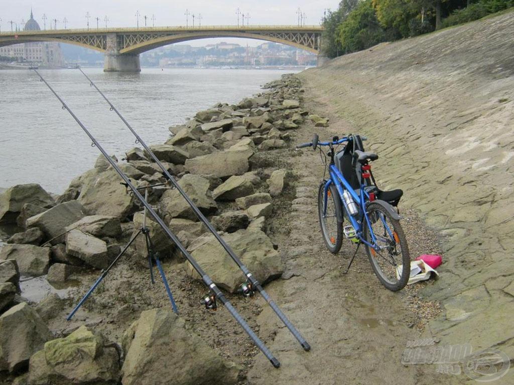 Beszereztem rendes biciklit is, hogy mobilisabb legyek! A kereső márnázás is csak akkor működhet, ha van mit keresni! A semmit kergetni nem jó időtöltés