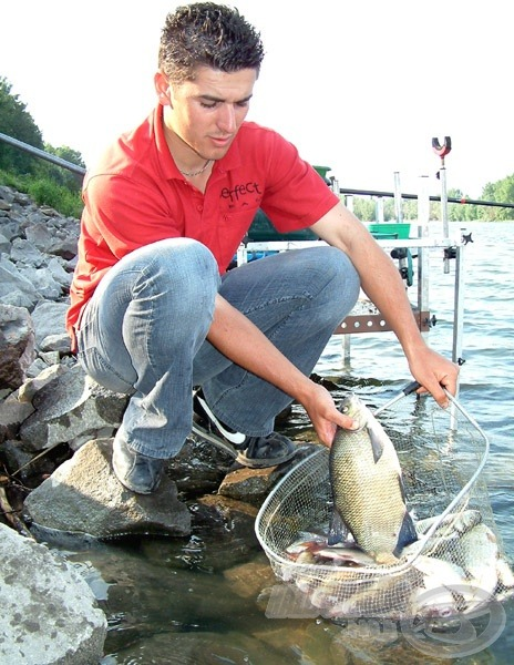 Közel 10 kilogramm hal került a szákba ideiglenesen, majd ismét vissza az éltető elemükbe