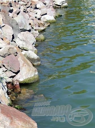 A meredeken mélybe nyúló, mólószárakat védő kövezések sokszor jó horgászhelyek