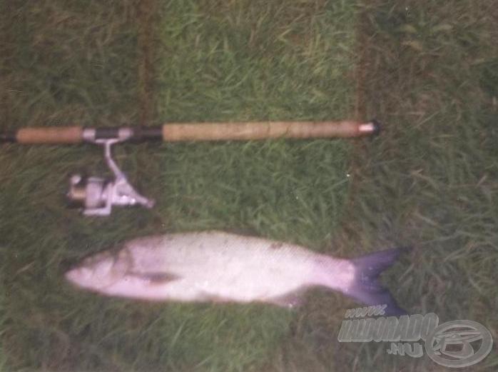 El lehet képzelni, hogy örültem ennek a halnak a 20 centis domolykók után