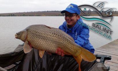 Bálint Horgásziskolája 1. rész - Hogyan lettem horgász?