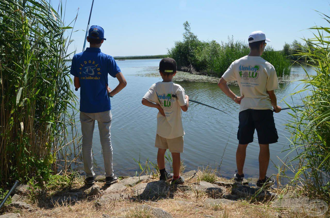 Bálint Horgásziskolája 6. rész - Induljon a horgászat, kezdjük a spiccbotos-úszós készséggel!