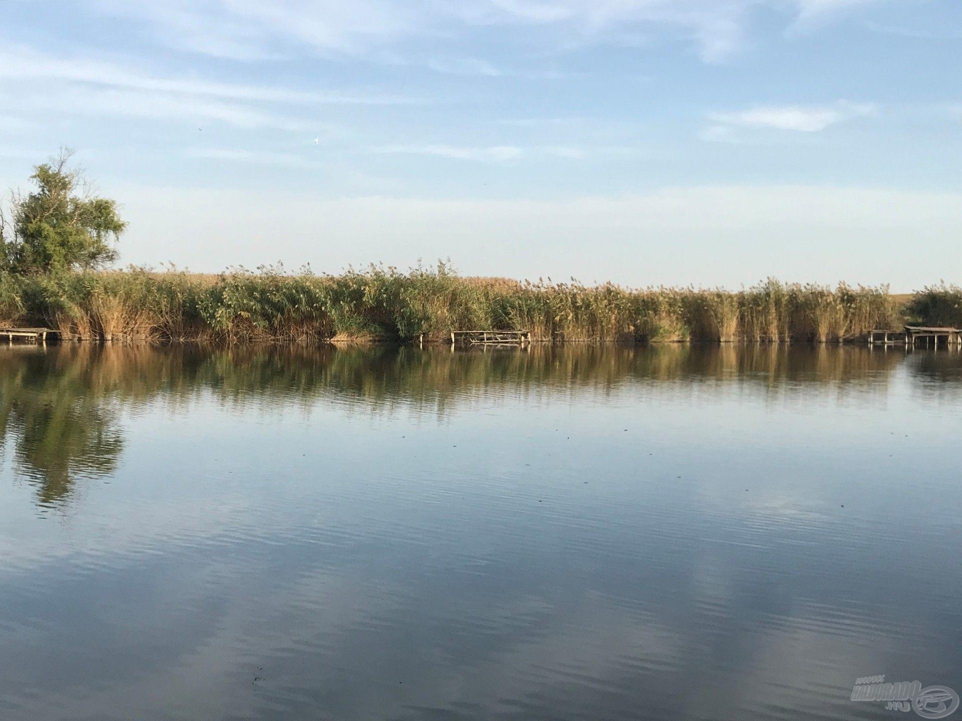 A túlparti öreg stég romjai elé horgászom, úgy 50 m-re