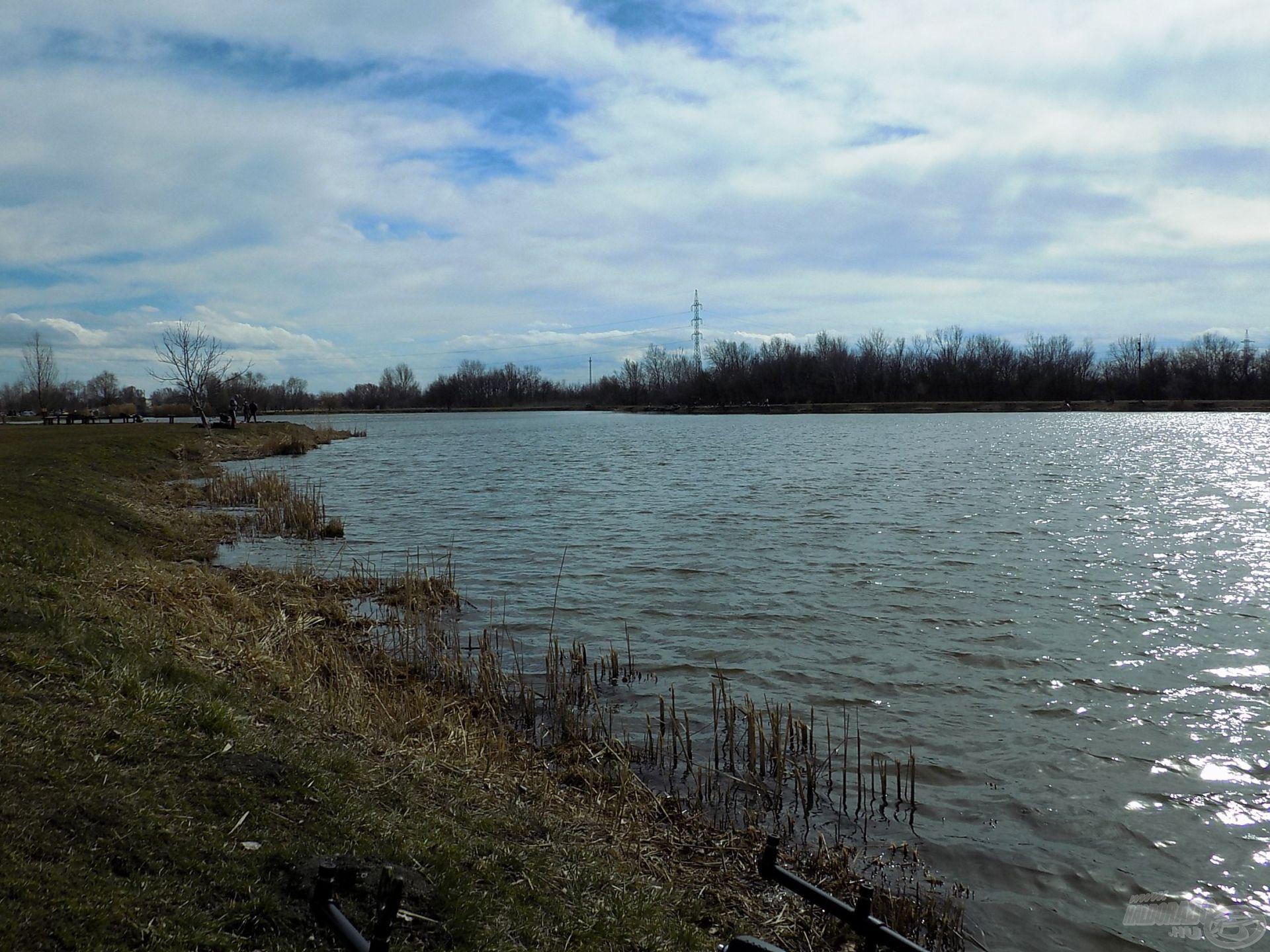 Márciusi tópart hideg széllel és kevés napsütéssel. Két héttel később már több a horgász, megtelik élettel a környék, fárasztásoktól, visító kapásoktól hangos a part