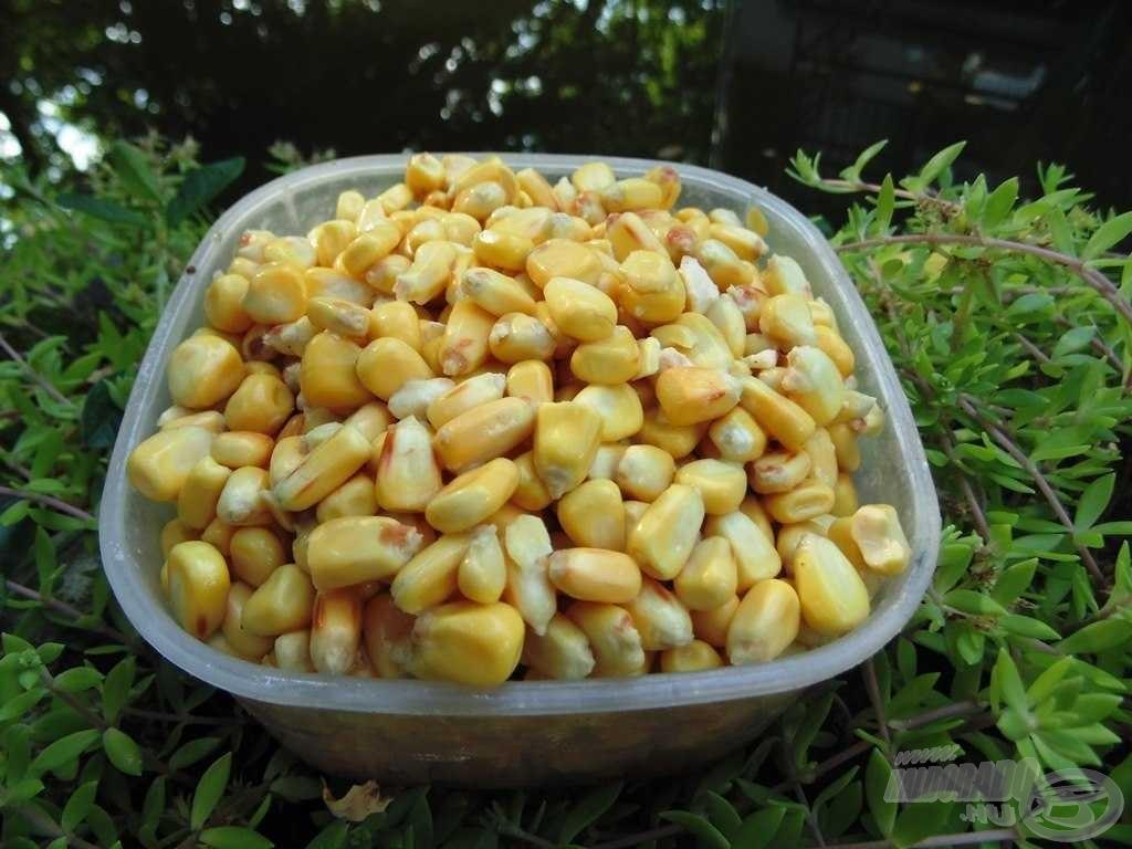 Tejsavas kukorica
