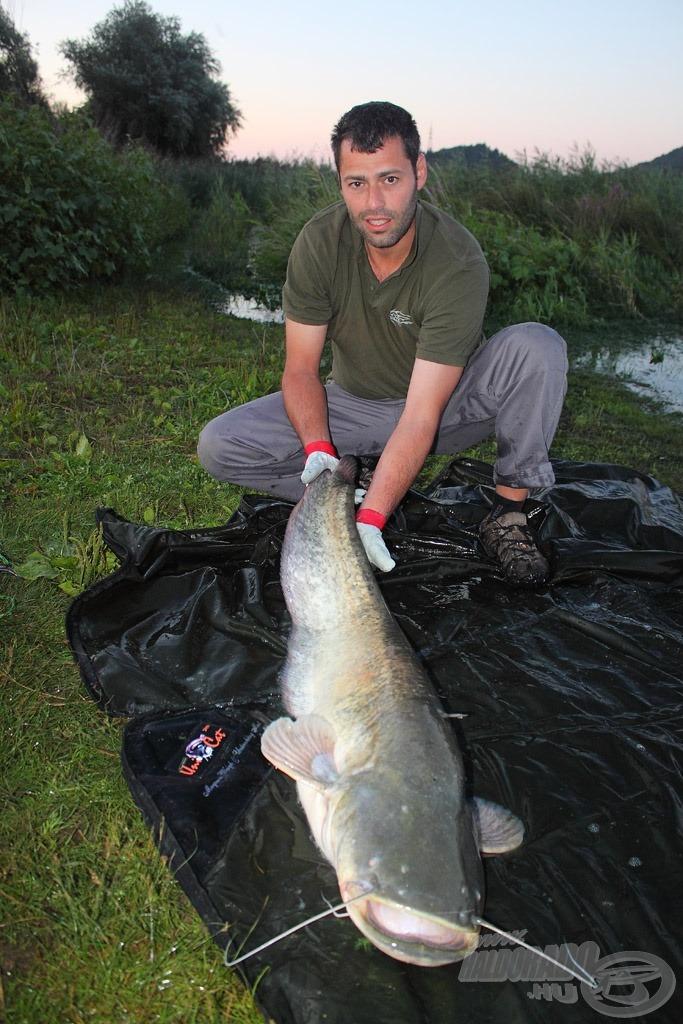 Ede és 13 kg-os harcsája